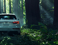 Audi Q3 in a Redwood Forest