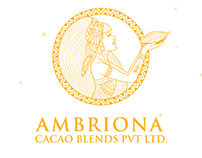 Ambriona Branding + Packaging