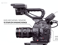 WEX PHOTO VIDEO | C300 MK II