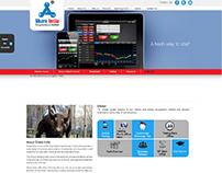 Website Design & Development for Share India