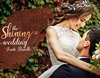 The Shining Wedding Fonts Bundle: 115+ Unique Fonts