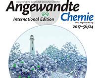 Inside back Cover design for Angewandte