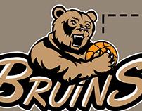 Bruins Logo Concept