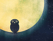 WIde Awake - Owl in the Moon