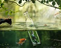 Life Inside Bottle - Photo Manipulation