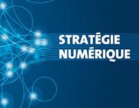 Bureau de la Stratégie Numérique Université de Genève
