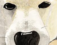 """Dog """"Komachi""""."""