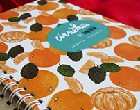 Winter eco notebooks