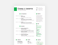 Free Clean Resume Template with Cover Letter