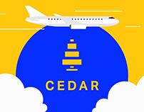 Explainer Video | Airport Solution | IATA