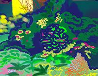 Colour Doodles of Presence