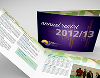 Brant Healthcare Annual Report Design