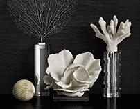 Coral Set 3d model