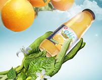 Elit juice (Draft)