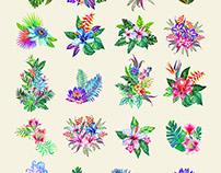 Bouquets - Tropicana. Watercolor floral illustrations.