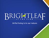 Brightleaf - Creative Direction