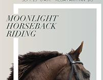 Moonlight Horseback Riding