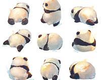 Pandas are unhappy,turn fluffy butt toward you