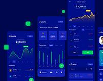 Cryptocurrency Wallet - UI Design