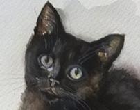 Kuzya, black kitten, watercolor