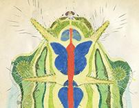 moth caterpillars Ⅰ