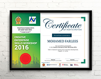 Certificate - Creative Enterprise Skills Workshop 2016