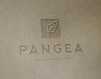 Pangea Café Branding