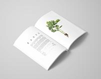 Herbs Book & Typography Design Concept