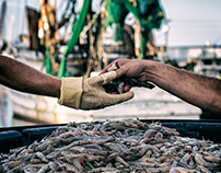 Sneads Ferry Shrimpers