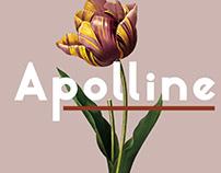 Apolline | Sans Serif Font