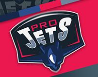 Pro Jets Logo Design