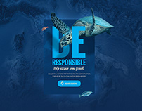 Euro Turtles Website Showcase