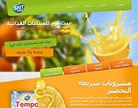 Bait Food Website