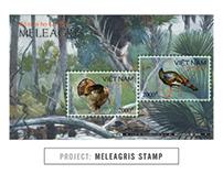 MELEAGRIS STAMP Project | Illustration