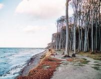 Gespensterwald Nienhagen - Oktober - Moods