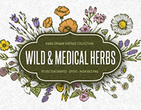 Wild & Medical Herbs Collection