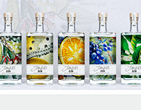 Janus Gin - Self-promotion Design Packaging