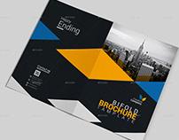 Bi Fold Multipurpose Corporate/ Business Brochure