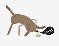 Scratch. Sniff. Stretch.