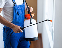 Specifications of a pest control service for hotels
