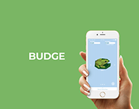 Budge Money Managing App