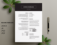 Simple Professional Resume Template / CV template