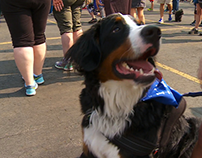 Animal Humane Society's 2016 Walk for Animals