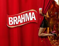 Camión Brahma Py