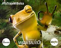 #YoTrajeMiBolsa - Mi planeta - Éxito