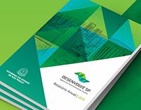 Relatório Anual 2013   Desenvolve SP