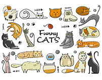 Funny cats of different breeds