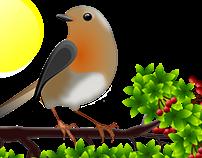 European robin - vector