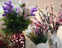 Khám phá những điều tuyệt vờilàng hoa giấy ở Huế