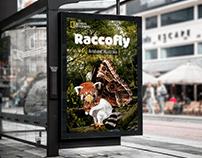 Raccofly